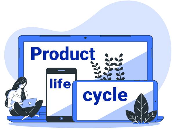 vòng đời sản phẩm